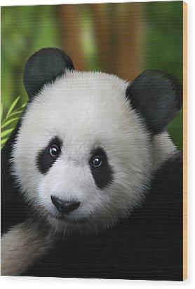 Giant Panda Wood Print by Julie L Hoddinott