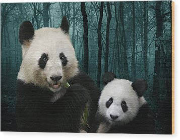 Giant Pandas Wood Print by Julie L Hoddinott