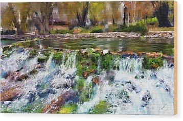 Giant Springs 1 Wood Print