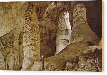 Giant Twin Domes At Carlsbad Caverns  Wood Print by Ruth  Housley