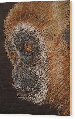 Gibbon Wood Print by Karen Ilari