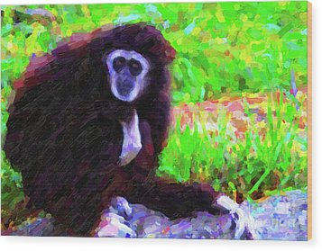 Gibbon Wood Print by Wingsdomain Art and Photography