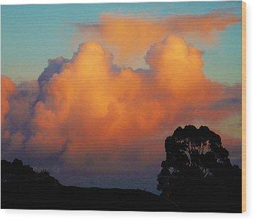 Gilded Dawn Wood Print by Mark Blauhoefer