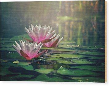 Gilding The Lily Wood Print by Carol Japp