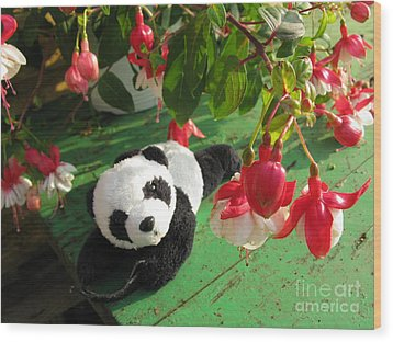Wood Print featuring the photograph Ginny Under The Red And White Fuchsia by Ausra Huntington nee Paulauskaite