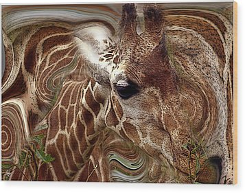 Giraffe Dreams No. 1 Wood Print