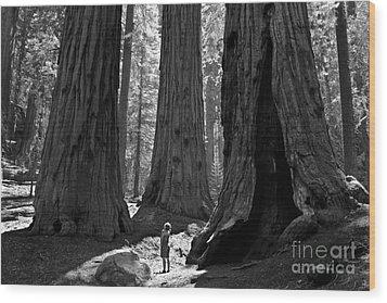 Girl And Giants Wood Print