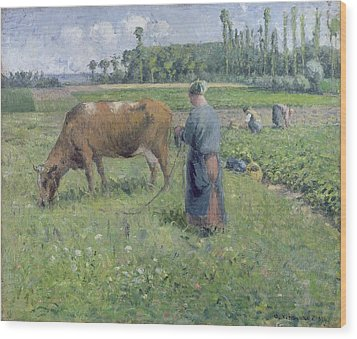Girl Tending A Cow In Pasture Wood Print by Camille Pissarro