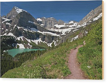 Wood Print featuring the photograph Glacier Backcountry Trail by Gary Lengyel