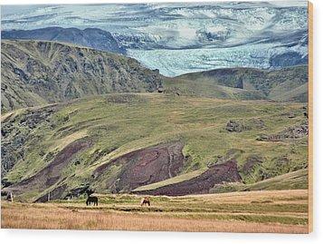 Glacier Mountains Meadows Horses Wood Print by David Halperin