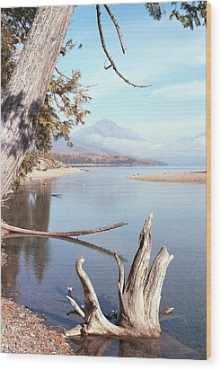 Glacier National Park 3 Wood Print