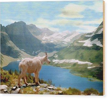Glacier National Park Wood Print by Kurt Van Wagner