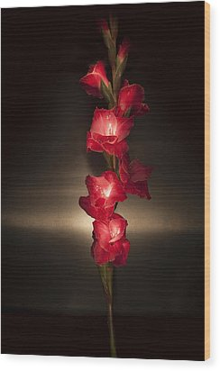 Wood Print featuring the photograph Gladioli_variation#8 by Richard Wiggins