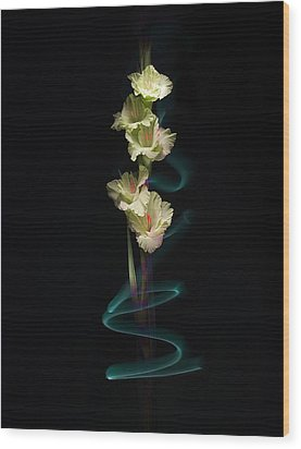 Wood Print featuring the photograph Gladiolus Variation#02 by Richard Wiggins