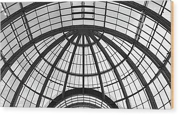 Wood Print featuring the photograph Glass Dome by Corinne Rhode