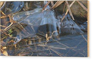 Glass Grasped Grass Wood Print by Doug Bratten