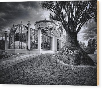 Glasshouse And Tree Wood Print