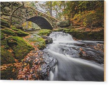 Gleason Falls Wood Print