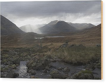 Glen Affric Storm Wood Print by Sue Arber