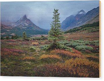 Glen Alps In The Autumn Rain Wood Print