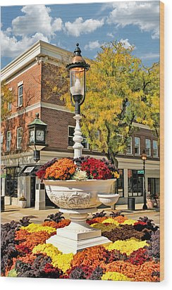Wood Print featuring the painting Glen Ellyn Watering Trough by Christopher Arndt
