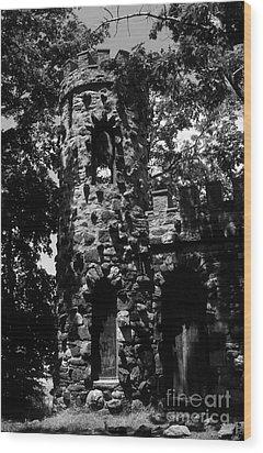 Glen Island Castle  Wood Print by Richard Rizzo