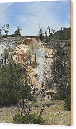 Glen Spring At Mammoth Hot Springs Upper Terraces Wood Print by Louise Heusinkveld