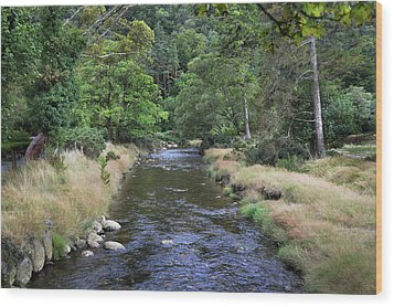 Wood Print featuring the photograph Glendasan River. by Terence Davis