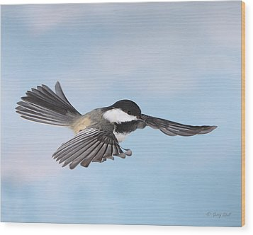 Wood Print featuring the photograph Gliding by Gerry Sibell
