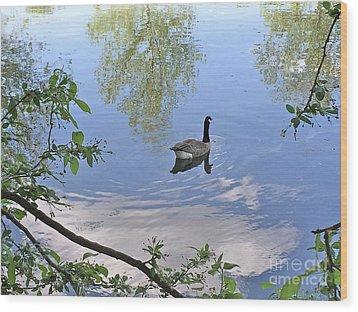 Gliding Goose Wood Print