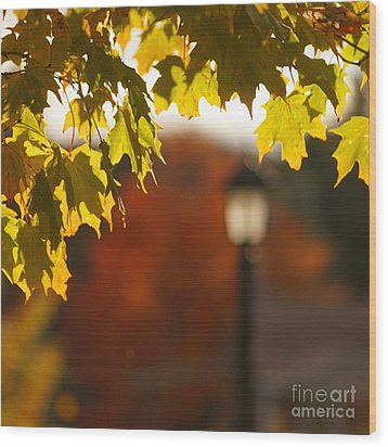 Wood Print featuring the photograph Glimpse Of Autumn by Aimelle