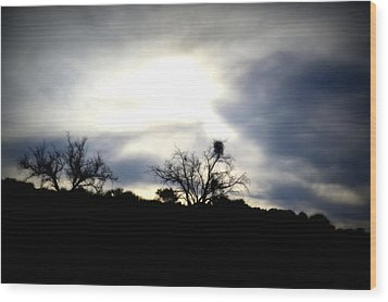 Gloaming Epiphany Wood Print by Nature Macabre Photography