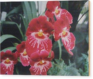 Glorious Fleur Wood Print by Judyann Matthews