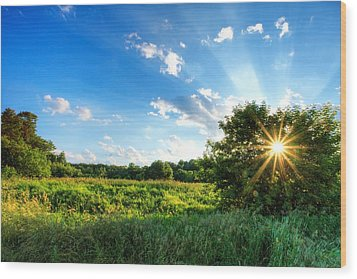 Wood Print featuring the photograph Glorious Landscape by Anthony Rego