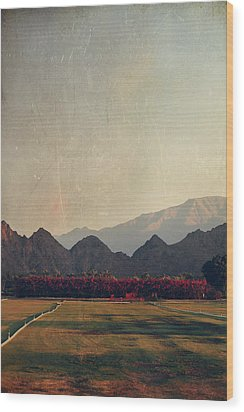Glorious Light Wood Print by Laurie Search