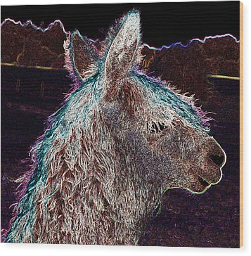 Glowing Alpaca Wood Print