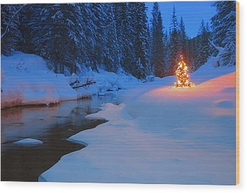 Glowing Christmas Tree By Mountain Wood Print by Carson Ganci