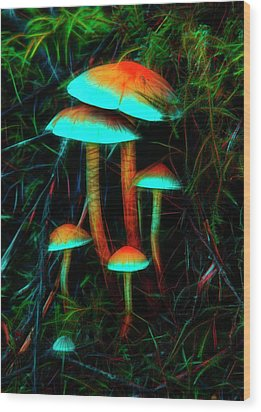 Wood Print featuring the photograph Glowing Mushrooms by Yulia Kazansky