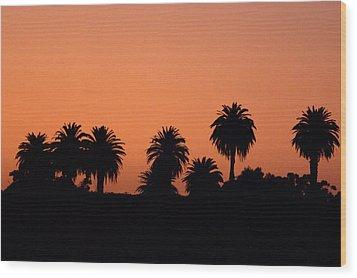 Glowing Palms Wood Print by Brad Scott