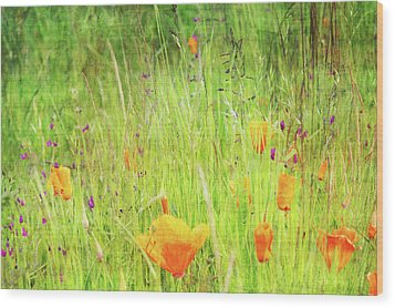 Glowing Summer Wood Print by Terrie Taylor