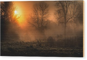 Glowing Sunrise Wood Print by Everet Regal