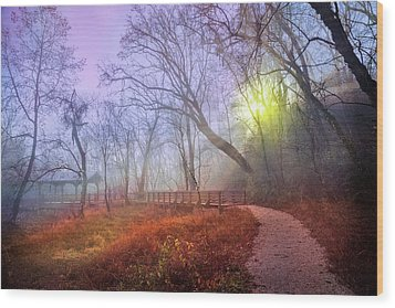 Wood Print featuring the photograph Glowing Through The Trees by Debra and Dave Vanderlaan