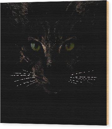 Glowing Whiskers Wood Print by Helga Novelli