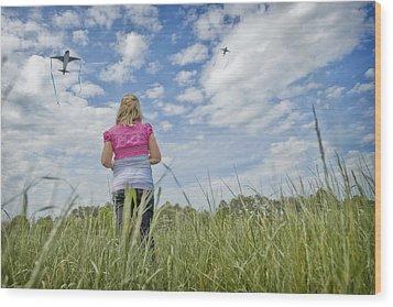 Go Fly A Kite Wood Print by Steve Shockley