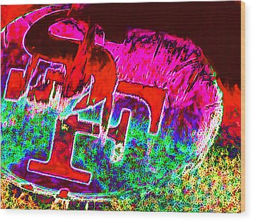 Go Niners 20130115 Wood Print by Wingsdomain Art and Photography