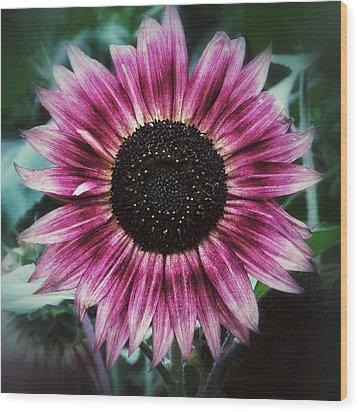 Go Pink Wood Print by Karen Stahlros
