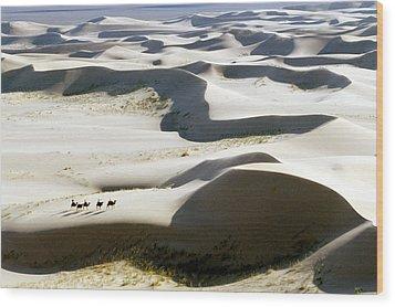 Gobi Desert Wood Print by Ria Novosti