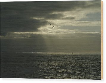God's Gulls Wood Print by Michael Courtney