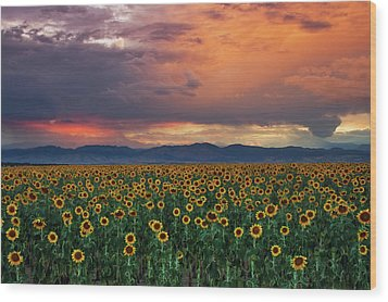 Wood Print featuring the photograph God's Sunflower Sky by John De Bord