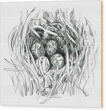 Godwit Nest Wood Print